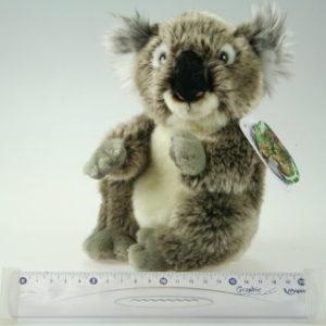 Plyš Koala