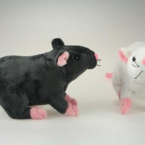 Plyš krysa