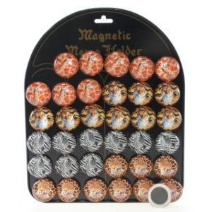 Magnety Safari 36/bal