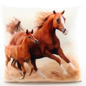 Polštářek fotopotisk koně