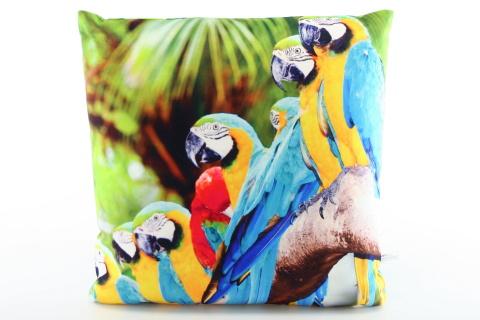 Polštářek fotopotisk papoušci