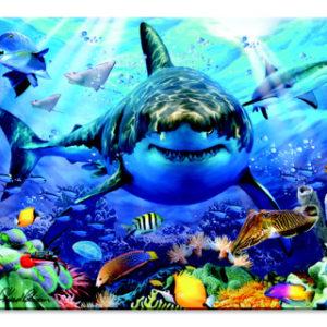 Magnet Žralok bílý 3D