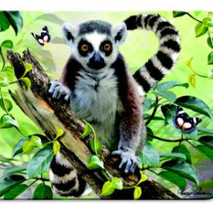 Magnet Lemur 3D