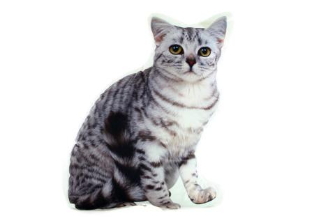 Polštářek 35 x 27 cm kočka šedivá