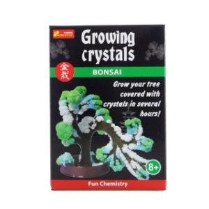 Rostoucí krystaly bonsaj